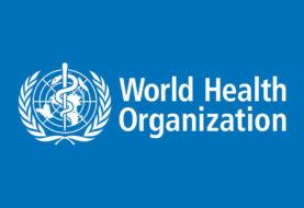OMS advierte de publicidad digital para niños de alimentos poco saludables