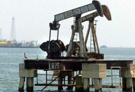 "Doce países ""No-OPEP"" acuerdan reducir a 600 mil barriles diarios"