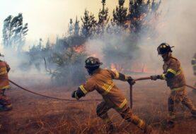 Bachelet destaca avance en el combate contra incendios forestales en Chile