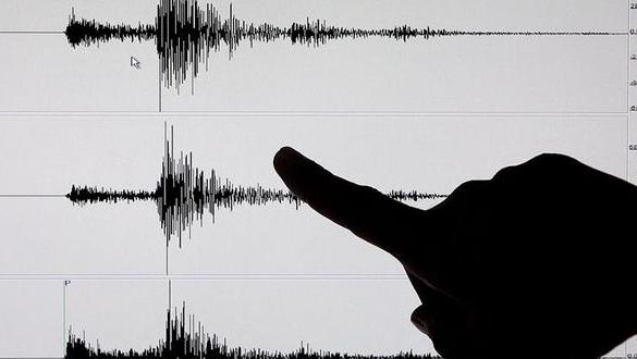 Un enjambre sísmico de 42 temblores afecta las costas del sur de México