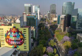 Murales hechos con pintura ecológica descontaminan la Ciudad de México