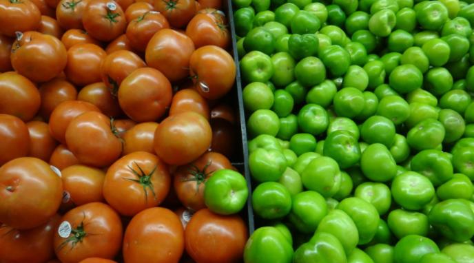"""México critica las """"condiciones extremas"""" que impone EEUU al tomate mexicano"""