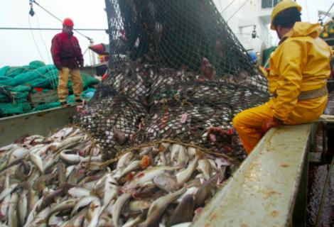 EEUU ratifica el acuerdo de pesca en el océano ártico central