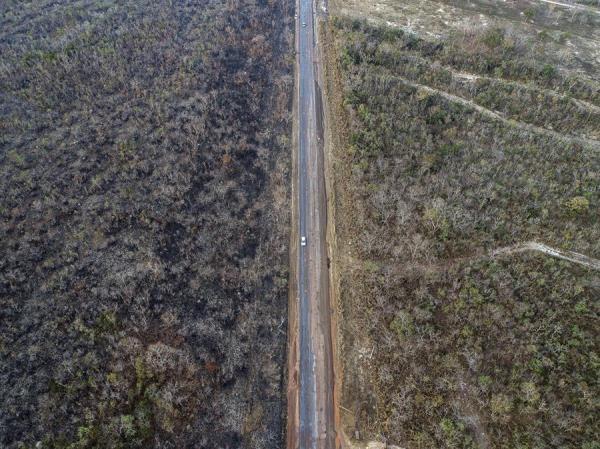 """Bolsonaro reitera que las ONG son las """"mayores sospechosas"""" por los incendios en la Amazonía"""