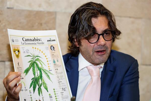 Legalizar marihuana en México romperá estigmas pero abre dudas en empresarios