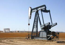 OPEP ve frenarse el crecimiento de la demanda de crudo a largo plazo