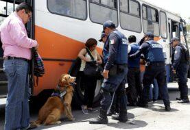 Percepción de inseguridad se dispara en mexicana Puebla ante alza de delitos