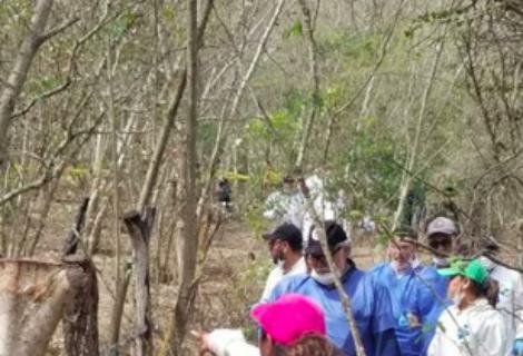 México recuperó 1.124 cadáveres de fosas clandestinas en los últimos 13 meses