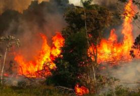 Incendios en la Amazonía brasileña crecieron un 30 % en 2019