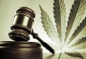 Ley de marihuana para fines lúdicos supera primer trámite en Senado mexicano