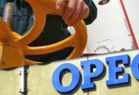 El crudo de la OPEP cae un 10,28 %, hasta 30,63 dólares el barril