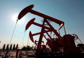 Precio del petróleo venezolano pierde 7,41 dólares y cierra en 19,53