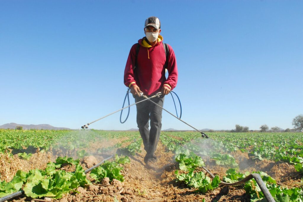 EEUU flexibiliza contratación de obreros con visado agrícola por coronavirus