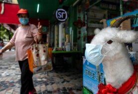"""Menos de 400 infectados """"activos"""" y 30 pacientes en China"""