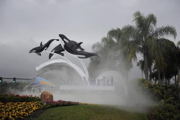 Parques de SeaWorld pierden 56,5 millones en el primer trimestre