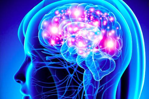 Hormonas sexuales podrían estimular el crecimiento de tumores cerebrales