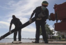 Alcalde de Miami pide detener venta de fertilizantes para proteger la bahía