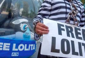 Activista disfrazada de orca pide al Seaquarium de Miami que liberen a Lolita
