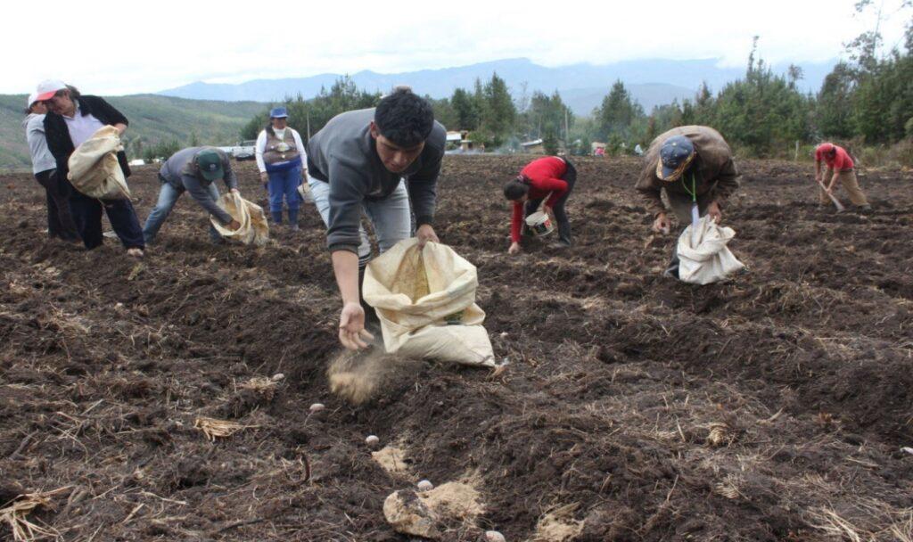 Perú advierte sobre posible crisis alimentaria