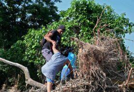 Iota salió de Honduras y cruzó a El Salvador convertida en depresión