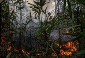 ONU: La pandemia reduce la emisión de CO2 pero no aplaca la crisis climática
