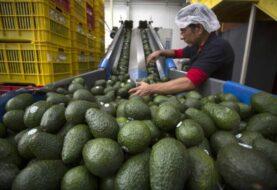 México tuvo superávit comercial récord de 34.476 millones de dólares en 2020