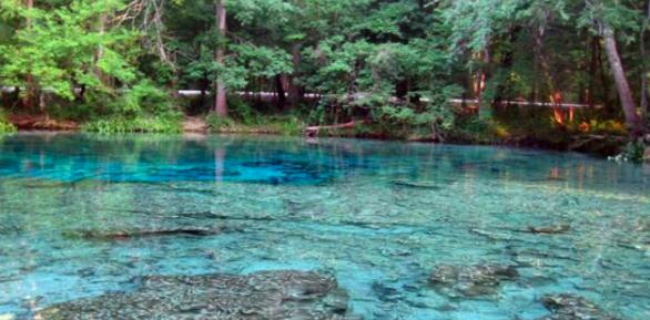 Buscan que las embotelladoras paguen por el agua de manantiales de Florida
