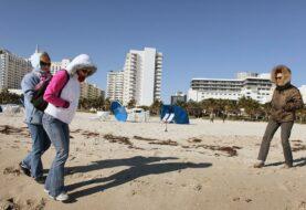 """En el sur de Florida Pronostican """"lluvia de iguanas"""" por bajas temperaturas"""