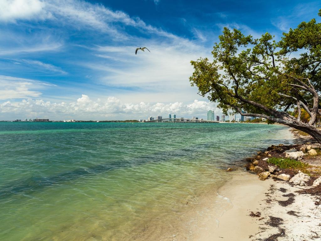 Virginia Key, una playa de Miami símbolo de la lucha por los derechos civiles