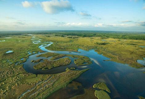 DeSantis construirá embalse para proteger los Everglades
